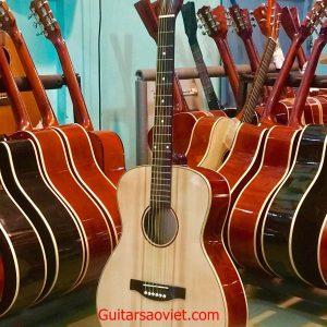 Guitar Acoustic SV-01ET