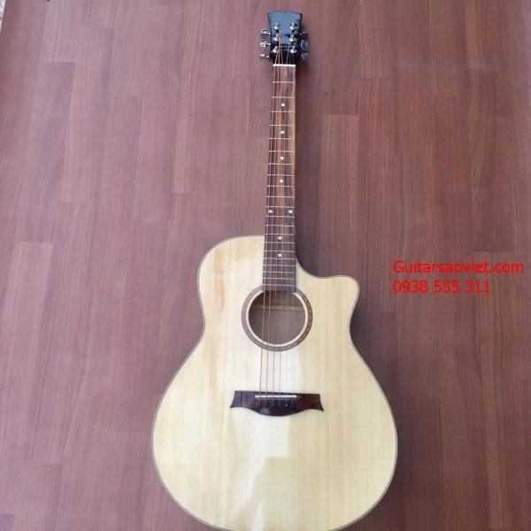 GUITAR ACOUSTIC ET-01SV