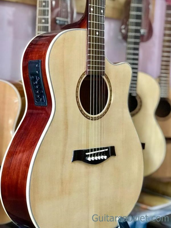 Guitar Acoustic HD-14SV