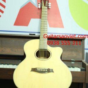 Guitar Acoustic HD-12SV