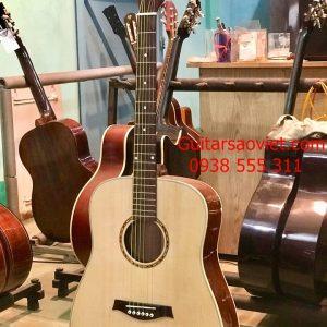 Guitar Acoustic HD-SV12D
