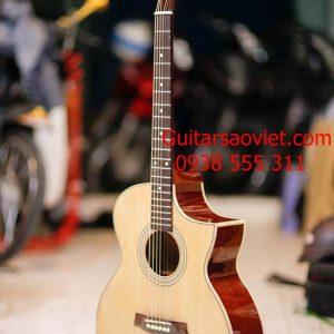 Guitar Acoustic HD-15S