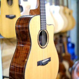 Guitar Custom C-T01SV