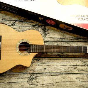 Guitar Classic Custom M-PC-01SV