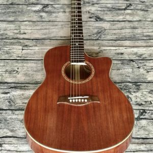 Guitar Acoustic HD-F11SV