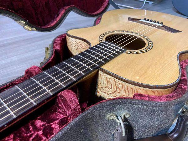 Đàn Guitar Acoustic Cao Cấp SP-01SV